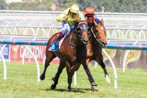 Bull Point is aiming for two wins from as many starts in 2014 in the Group 1 Futurity Stakes