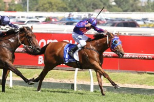 Autumn Stakes odds were short on the 2016 winner Mahuta