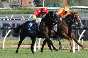Dissident (outside) justified his favouritism to win the CF Orr Stakes at Caulfield on Saturday.