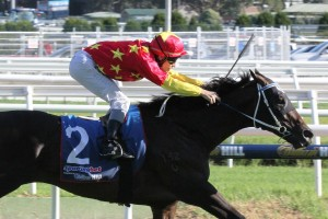 After powering home in the CF Orr Stakes, Dissident will face the same conditions in the Futurity Stakes.