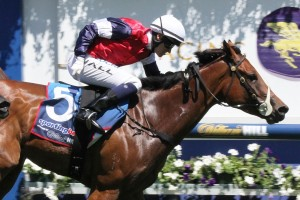 Sabatini won the Group 3 Kevin Hayes Stakes at Caulfield on Saturday.