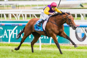 Bonaria has registered as undoubted market mover for the 2014 Schweppervescence Trophy