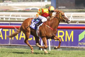 2013 Blue Diamond Stakes Won By Miracles Of Life – Results
