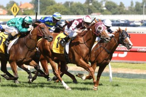 Stratum Star heads to the Australian Cup after Peter Young Stakes win