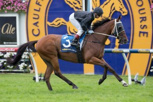 Mourinho will look to complete the Peter Young Stakes-Australian Cup double at Flemington.