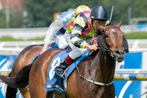 Suavito is favourite to win the Blamey Stakes on the back of her Group 1 Futurity Stakes win.