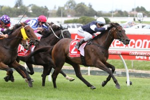 2017 Warrnambool Cup Results: High Church Wins for Weir