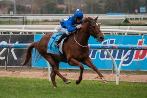 Trainer Mike Moroney has outlined the Group 3 Cockram Stakes as the ideal target for Jemerica through the 2014 spring