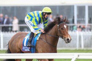Get The Nod has claimed the 2014 Vain Stakes