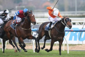 2014 Epsom Handicap Jockeys Take Shape