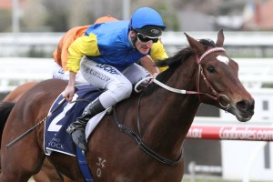 Black Heart Bart uncontested favourite for 2017 Goodwood