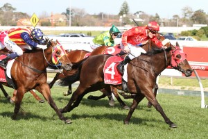 Redzel, red colours, leads all the way to win the Resimax Stakes at Caulfield. Photo by Ultimate Racing Photos.