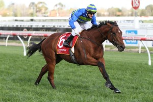 Melbourne Autumn Racing Carnival Featured Horses: Jameka