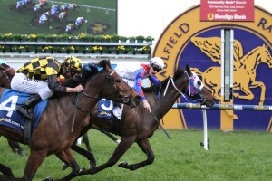 Griante (outside) is primed for a strong performance in The Galaxy at Rosehill on Saturday. Photo: Ultimate Racing Photos