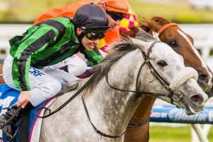 2016 Strickland Stakes Tips and Betting Preview