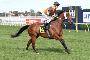 Thousand Guineas Prelude Odds & Tips - Ladbrokes