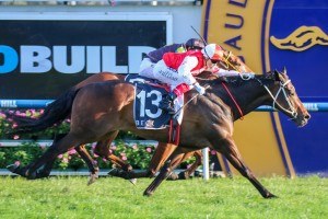 2016 QTC Cup Tips and Betting Preview