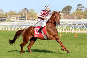 Sir Rupert Clarke Stakes odds at Ladbrokes