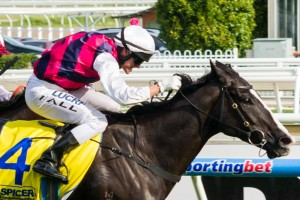 It Is Written is one of 8 new horses to nominate after nominations for the 2014 Australia Stakes were extended.