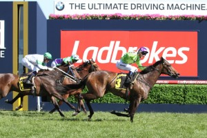 Thousand Guineas betting tips - Ladbrokes.com.au