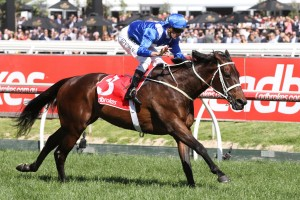 Winx clear odds-on favourite in Cox Plate betting markets.