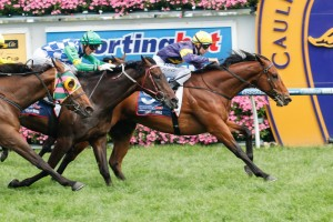 Big Memory (inside) will have to overcome a wide start from barrier 20 (into 17) for a Caulfield Cup win.