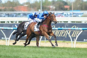 Earthquake will enjoy a trial with Chad Schofield at Cranbourne on Thursday.
