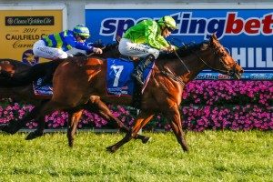Griante wins the 2014 Sprint Series Final on Caulfield Guineas Day