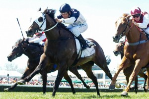 Lion Of Belfort will be aiming to continue his great run of from in the 2014 Rubiton Stakes