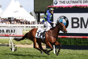 Caulfield Cup betting at Ladbrokes.com.au