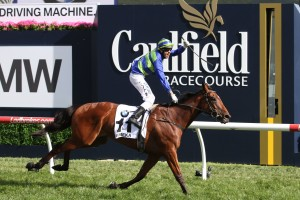 2016 Caulfield Cup Results: Jameka A Dominant Winner