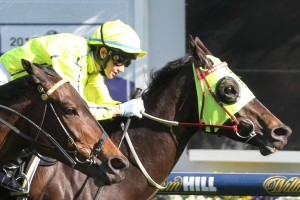 La Passe scores back to back wins Group 2 wins in the Tristrac Stakes at Caulfield. Photo by Ultimate Racing Photos.