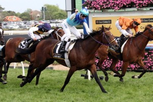 Caulfield Cup Results 2014: Admire Rakti Storms Home for Victory