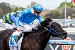 Fontein Ruby will aim for the first leg of the Wakeful/Crown Oaks double tomorrow.