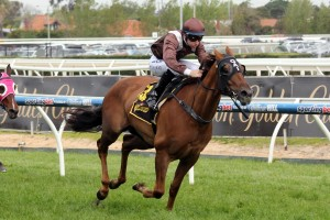 Sweet Idea dominates the 2014 Tristarc Stakes with Tommy Berry on board. Source: Race Horse Photos Australia.