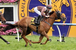 Tommy Berry (pictured here on Sweet Idea) will saddle Watermans Bay in the AJ Scahill Stakes this Saturday.