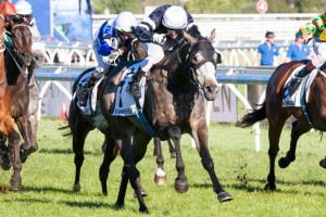 Fawkner wins Caulfield Cup