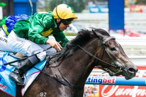 Girl In Flight is currently on top of 2014 Schweppervescence Stakes betting markets.