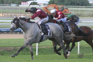 Liam Birchley is not confident Black Jet will win Saturday's Spear Chief Quality at Doomben. Photo: Daniel Costello