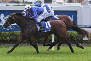 Hijack Hussy remains the favourite to win the $1 million Magic Millions Guineas on Saturday.