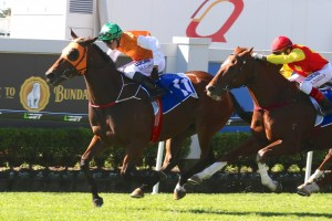 Bewhatyouwannabe overcame a talented field to win the 2015 Members' Handicap at Doomben. Photo: Daniel Costello
