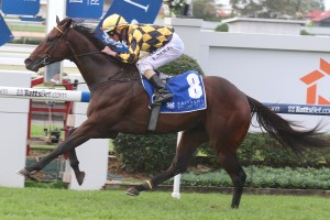 Havana upset fancied rivals Hucklebuck and Dothraki to win the 2014 Fred Best Classic at Doomben this afternoon.