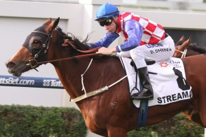 Streama showed her class with a professional win in the 2014 Doomben Cup.