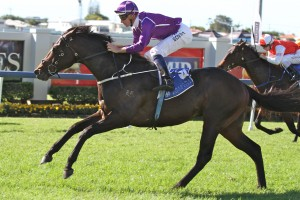 Waller Likely To Field Six in 2014 Doncaster Mile