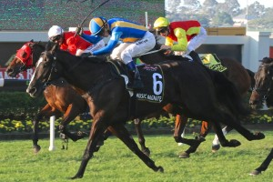 Doomben 10,000 Winner Music Magnate Out of Spring