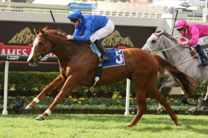 Lee Freedman has revealed the Group 3 Cockram Stakes is likely to be Hazard's first target this season. Photo: Daniel Costello