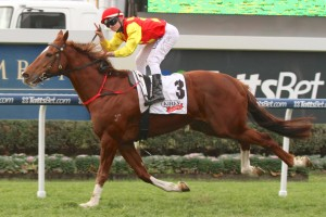 Top Brisbane miler Epic will step in class for the first time at the Shannon Stakes.
