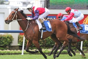 Jockey Chris Munce is excited by his chances on Belltone in the 2014 QTC Cup