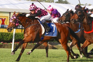 Hopfgarten will be one to beat this Saturday at Doomben in the Recognition Stakes.
