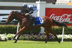 2016 Silver Shadow Stakes Tips and Betting Preview
